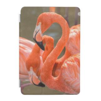 Pink Flamingos at Gatorland iPad Mini Cover