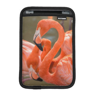 Pink Flamingos at Gatorland iPad Mini Sleeve