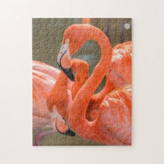 Pink Flamingos at Gatorland Puzzles