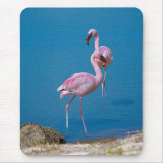 Pink Flamingos at the Lake Mouse Mat
