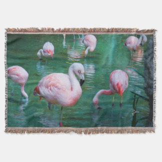 Pink Flamingos Chic Nature Photography Throw Blanket