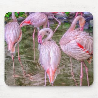 Pink Flamingos Mouse Mat