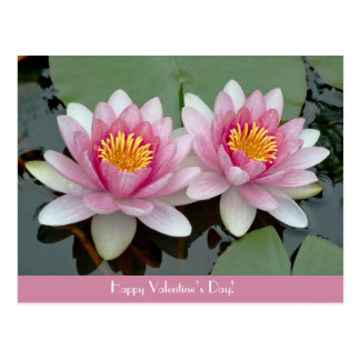 Pink Floating Waterlily LotusValentive's Day Card