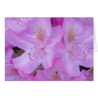 Pink Floral Any Occasion Greeting Cards