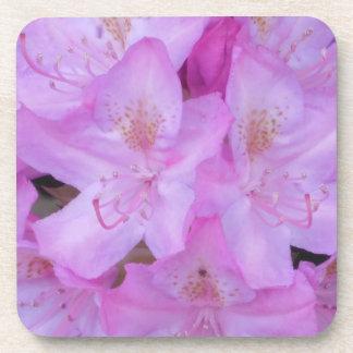 Pink Floral Coaster Set