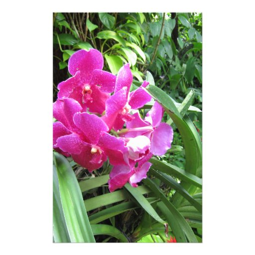 Pink floral on rich greenery customized stationery