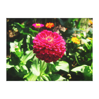 Pink Flower Amidst Garden Gallery Wrapped Canvas