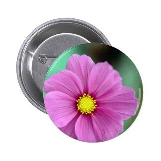 Pink Flower Buttons