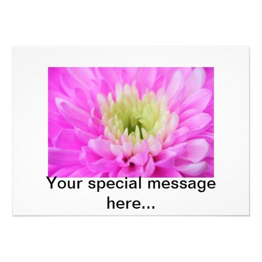 Pink Flower Closeup Announcements