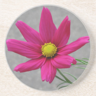 Pink Flower custom coaster