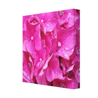 Pink Flower High Canvas Print