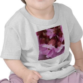 pink flower in spring t-shirts