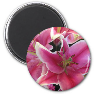 Pink flower magic magnet