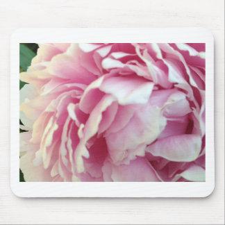 pink flower petals mouse pad