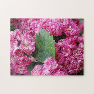 Pink Flower photo puzzle