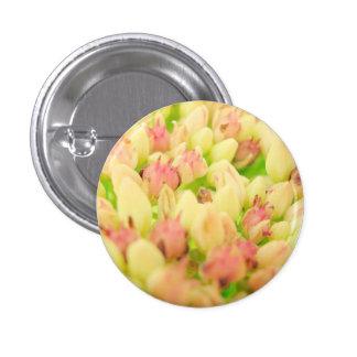Pink Flowerbed Pin