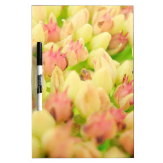 Pink Flowerbed Dry-Erase Board