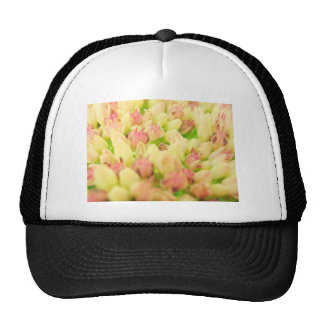 Pink Flowerbed Trucker Hats