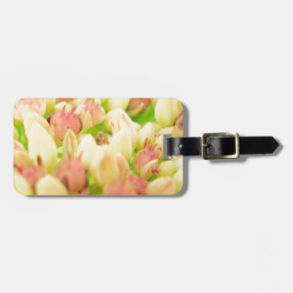 Pink Flowerbed Tag For Bags