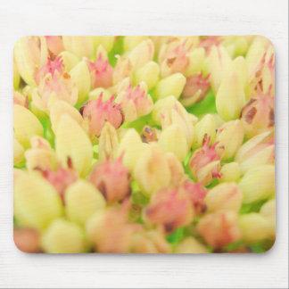 Pink Flowerbed Mousepad