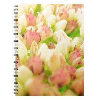 Pink Flowerbed Notebook