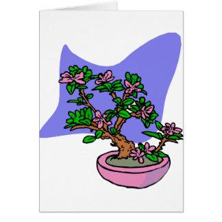 Pink Flowering Bonsai Pink Pot Blue Back Greeting Card