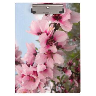 Pink Flowering Branch Clipboard