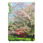 Pink Flowering Dogwood