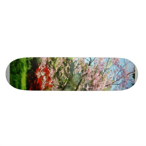 Pink Flowering Dogwood 20 Cm Skateboard Deck