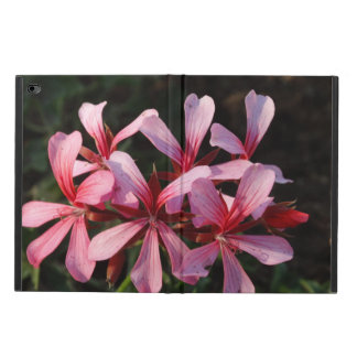 Pink Flowers Blossom Photo iPad Air 2 Case