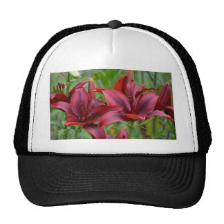 Pink Flowers Blossoms Lilies Peace Love Destiny Hats