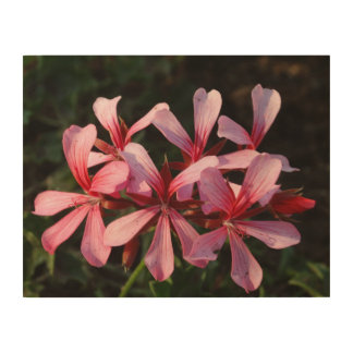 Pink Flowers Blossoms Photo Wood Wall Art