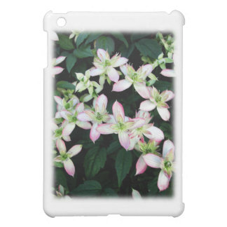 Pink flowers. Clematis. On White. iPad Mini Cover