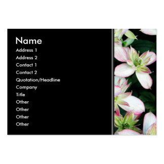 Pink flowers. Clematis. Pack Of Chubby Business Cards
