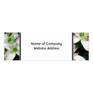 Pink flowers. Clematis. Pack Of Skinny Business Cards