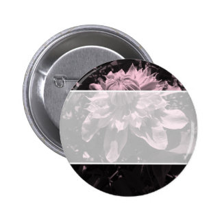 Pink flowers. Clematis. Stylish design. Button
