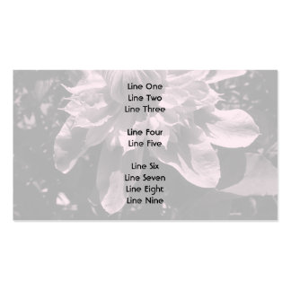 Pink flowers. Clematis. Stylish design. Business Card Templates