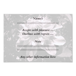 Pink flowers. Clematis. Stylish design. Custom Announcements