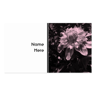 Pink flowers. Clematis. Stylish design. Pack Of Standard Business Cards