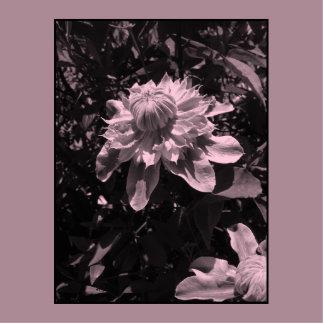 Pink flowers. Clematis. Stylish design. Photo Sculpture Badge