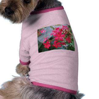 Pink flowers floral nature pet shirt