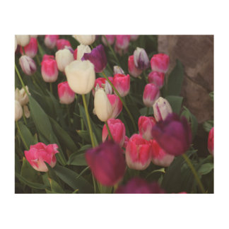Pink Flowers in Spring Wood Wall Decor