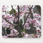 pink flowers mousepads