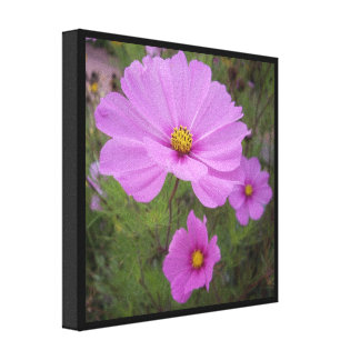Pink Flowers on Canvas Canvas Print