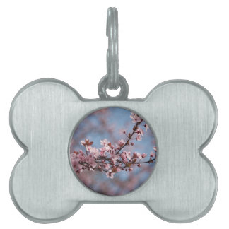pink flowers on tree pet name tag