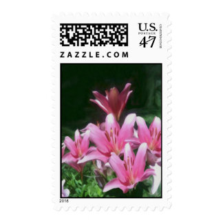 Pink Flowers Stamps