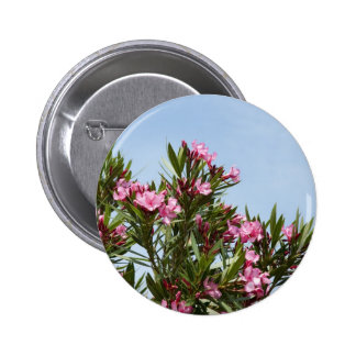 Pink flowers with a blue sky 6 cm round badge