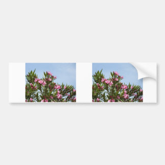 Pink flowers with a blue sky bumper sticker