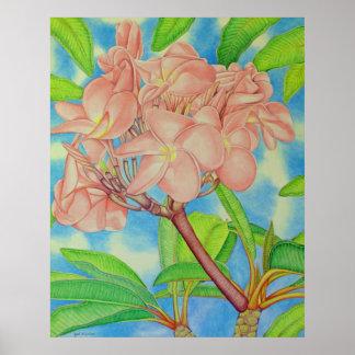 Pink Frangipani Print