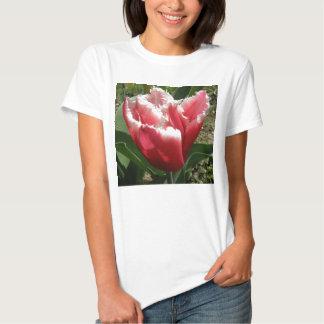 Pink Fringed Tulip Ladies T Shirt